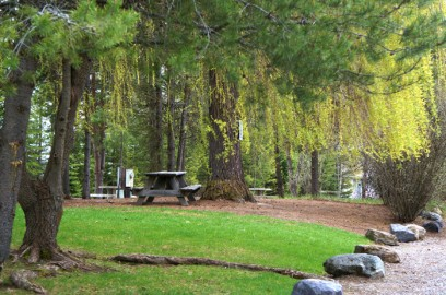 rv park picnic bench